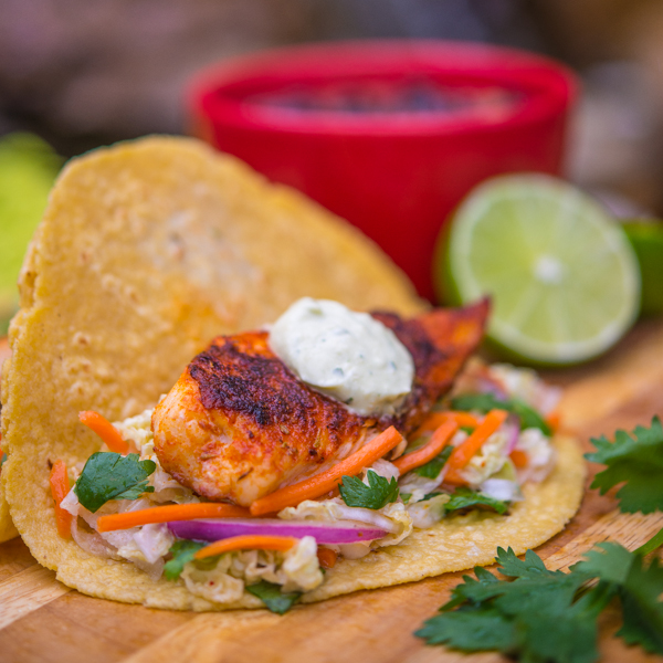 Blackened Tilapia Tacos with Jicama Coleslaw 3